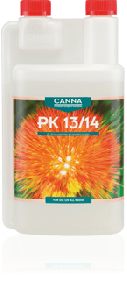 Canna PK 13-14
