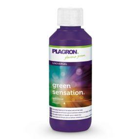 Green Sensation Plagron 100ml