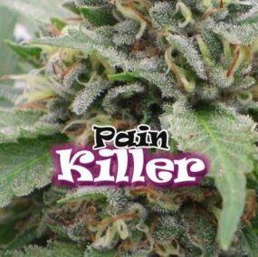 Painkiller Feminizada Dr. Underground