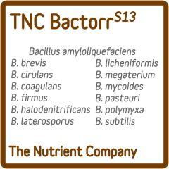 BactorrS13 Bacterias Beneficiosas para cultivo de TNC