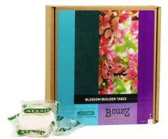 Blossom Builder Tabzz B'Cuzz