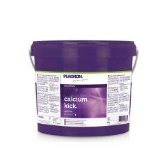 Calcium Kick 5kg Plagron