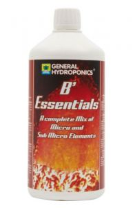 Essentials GHE