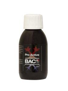 Pro Active